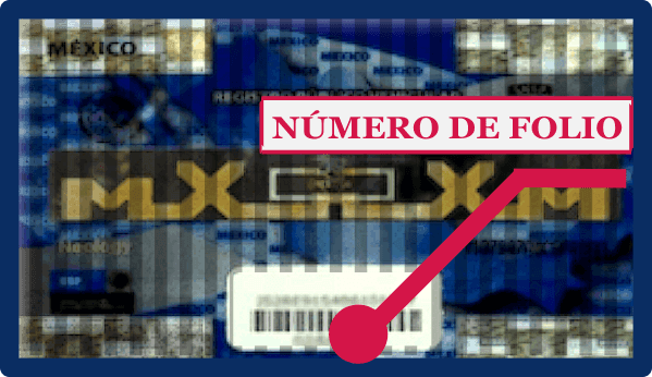 Constancia de inscripción Repuve - Chip REPUVE